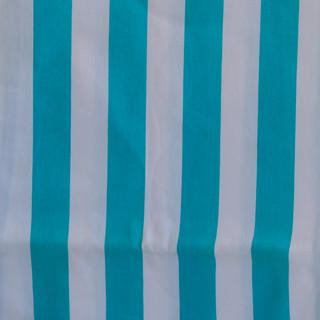 Nyeleti Events Table Cloth and Napkin Sample 26