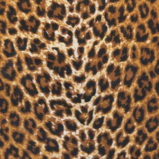 Nyeleti Events Table Cloth and Napkin Sample 25