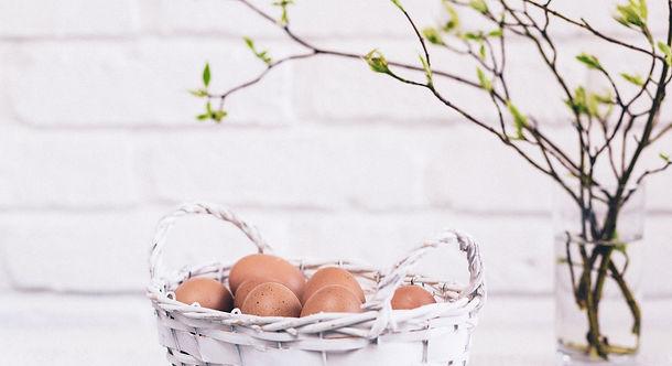 all eggs in the same basket.jpg