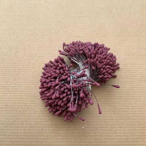 Stamens - 420 - Wildberry
