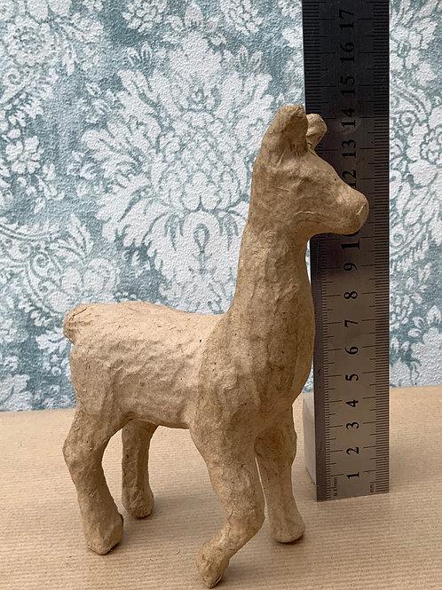 Small ~ Lama