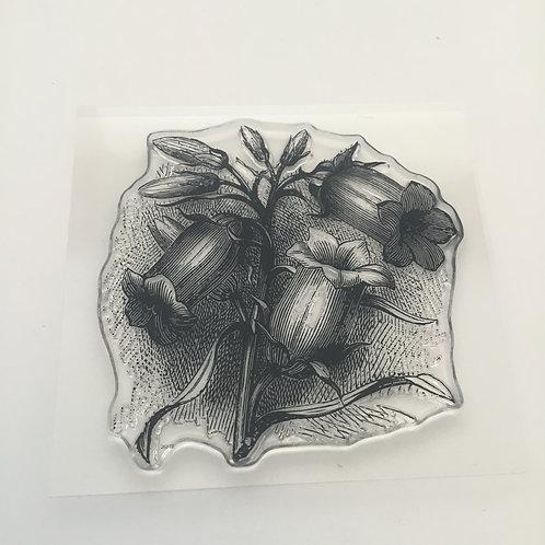Fuchsia Stamp