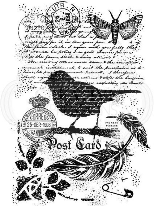Bird background - Clear Stamp