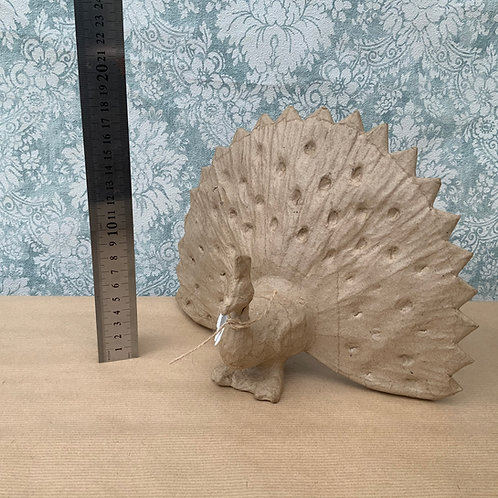 large ~ Peacock