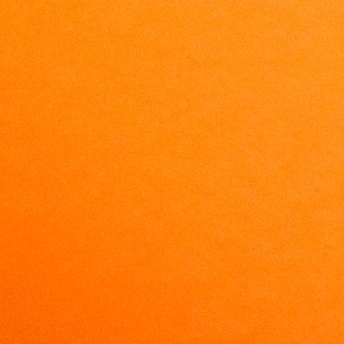 Pale Orange - 25 Pack - Maya