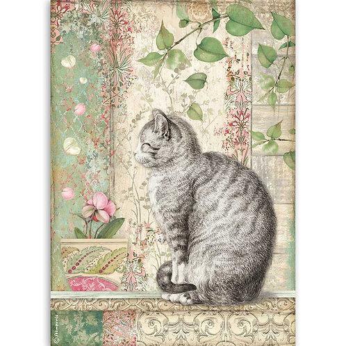 A4 - Rice Paper - Cat