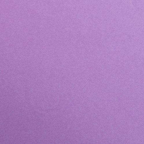Purple - Single Sheets - Maya