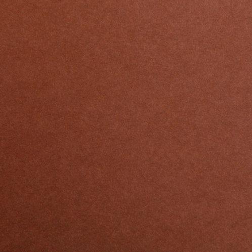 Brown - 10 Pack- Maya