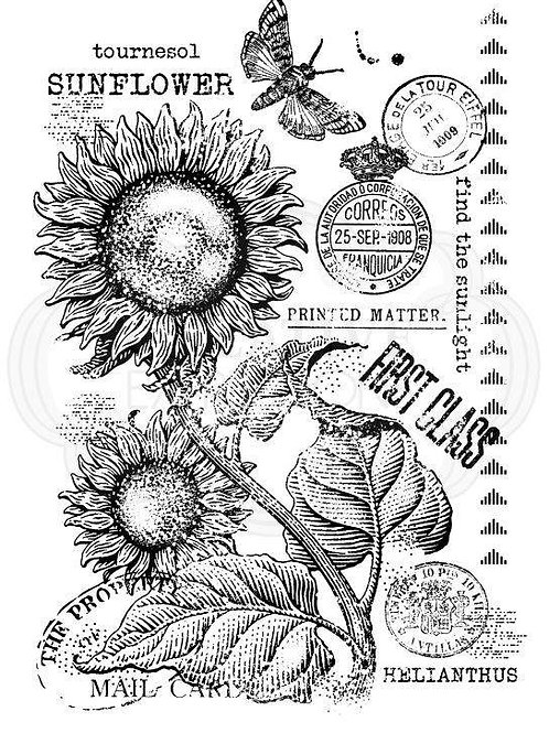A6 Clear Stamp - Vintage Sunflower