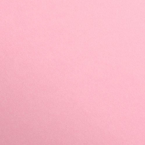 Pale Pink - 25 Pack - Maya