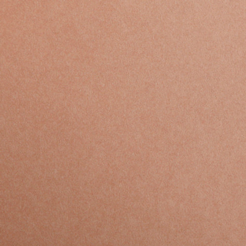 Light Brown - 10 Pack - Maya