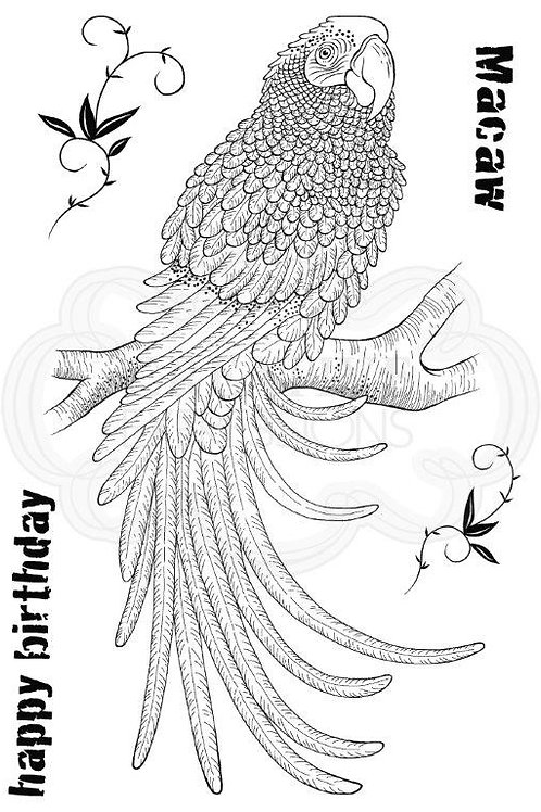 Macaw - Clear Stamp