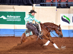 AQHA World Champions - AGAIN!