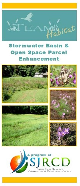 Stormwater Basin Brochure