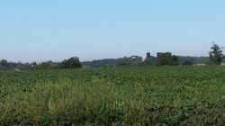 South Jersey Farmland