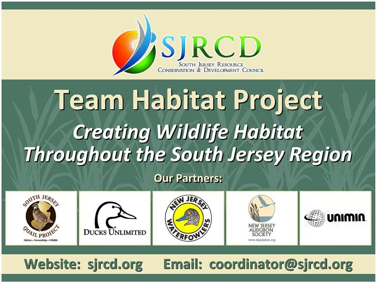 Team Habitat Program