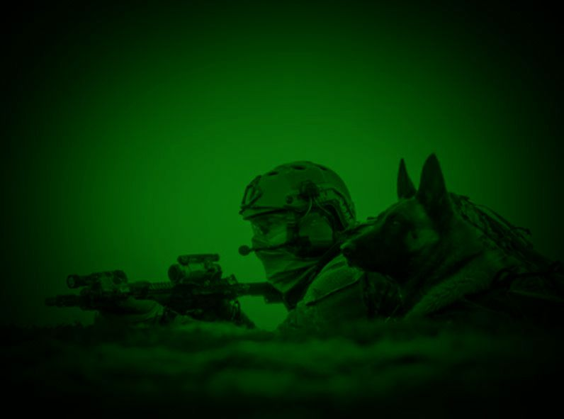 MWD and soldier