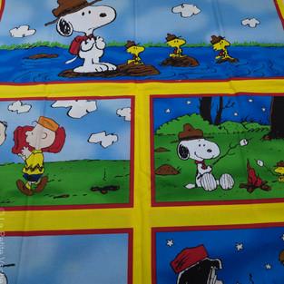 Camp Snoopy (2 of 9).jpg