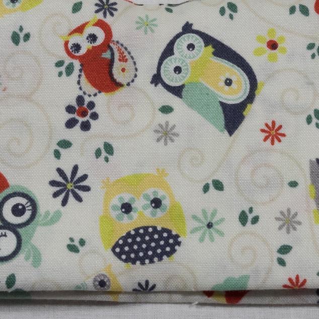 Winky Owl (2 of 2).jpg