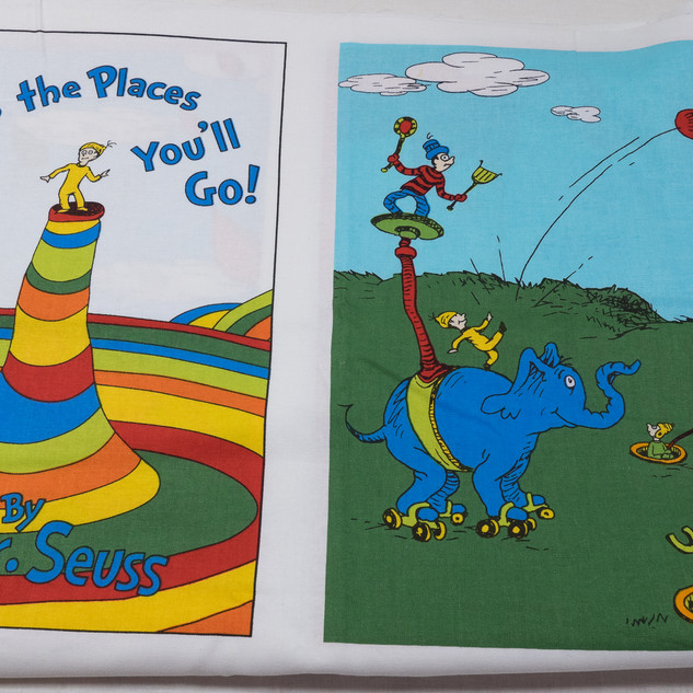 Oh the Places Youll Go (2 of 6).jpg