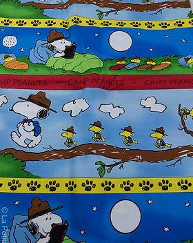 Camp Snoopy (3 of 9).jpg