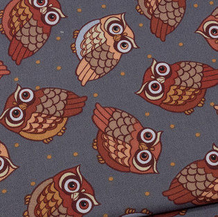 Autumn Owls (2 of 7).jpg