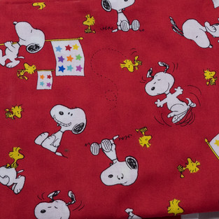 Camp Snoopy (7 of 9).jpg