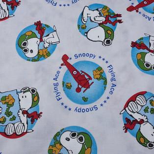 Camp Snoopy (9 of 9).jpg
