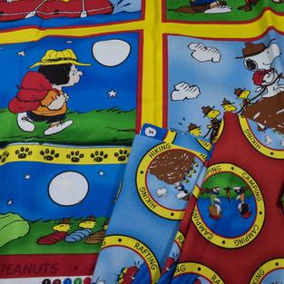 Camp Snoopy (1 of 9).jpg