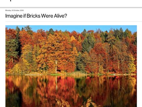 WRITING: Imagine if Bricks Were Alive
