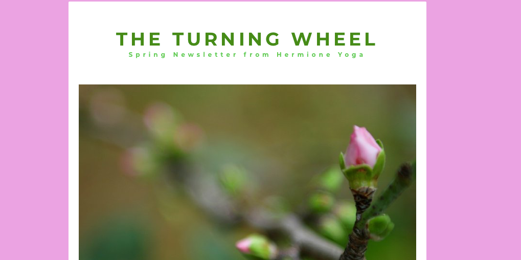 The Turning Wheel - issue 2 Spring 2020