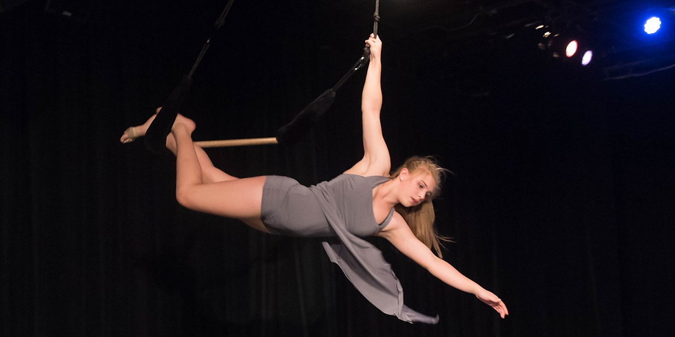 Intermediate Aerial (Class at capacity-Please contact us!)