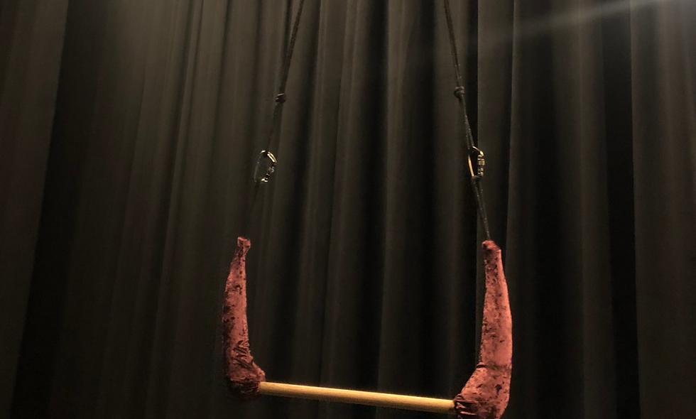Trapeze (important details in description)