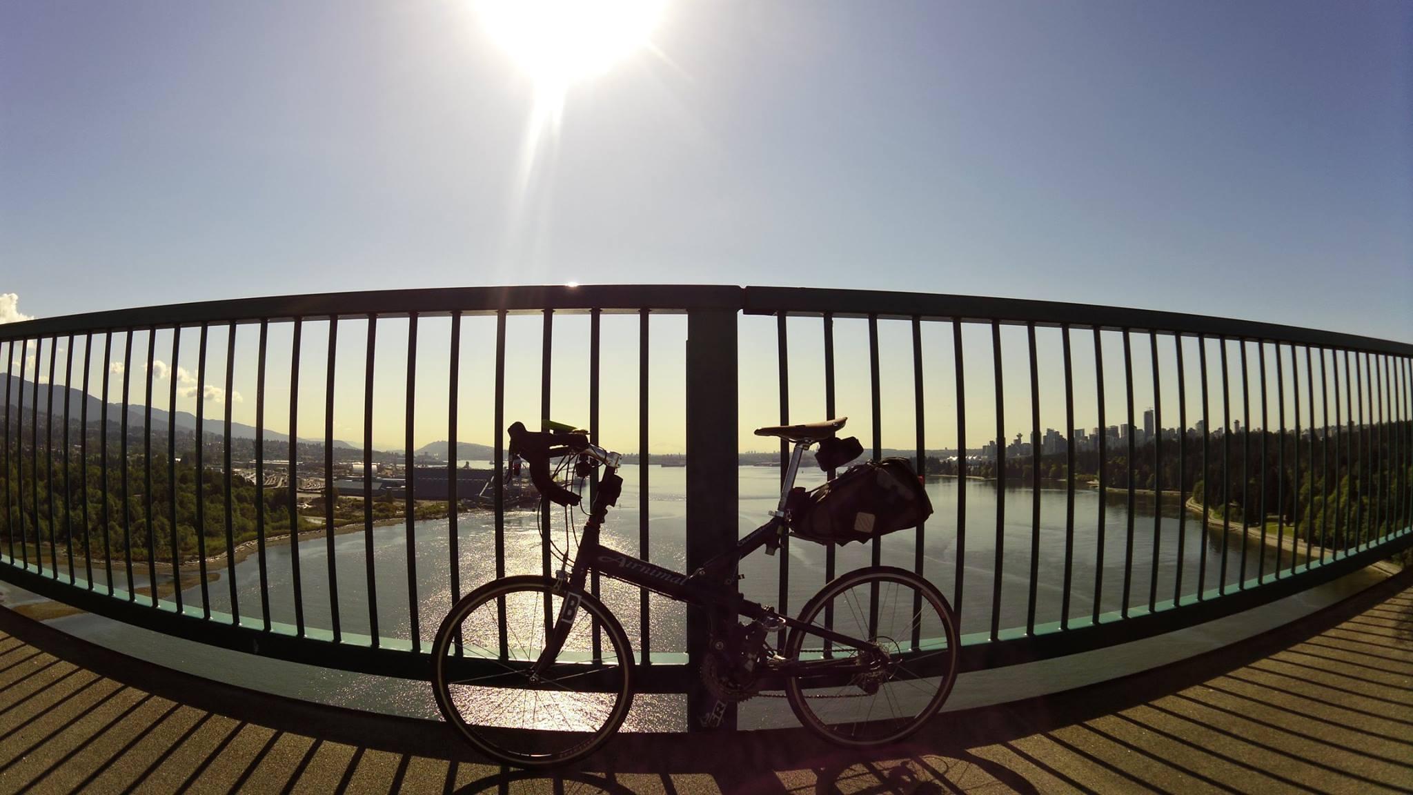 Airnimal in British Columbia (Lion Bridge)