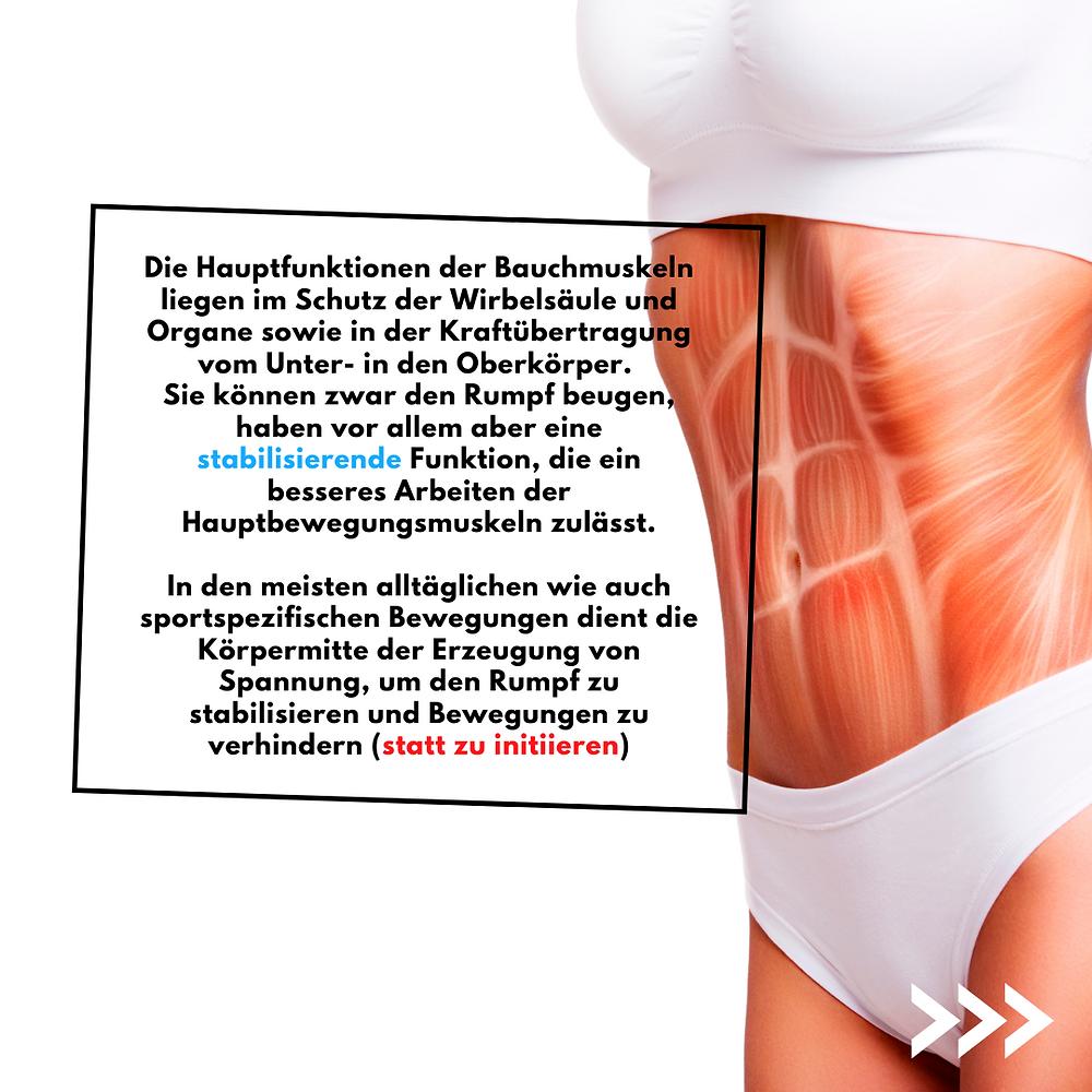 Die Hauptfunktion der Bauchmuskeln liegen im Schutz der Wirbelsäule sowie in der Kraftübertragung. Sie haben eine stabilisierende Funktion. In den meisten alltäglichen Bewegungen dient die Körpermitte der Erzeugung von Spannung, um den Rumpf zu stabilisieren und Bewegungen zu verhindern.