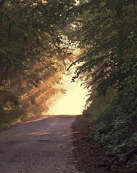 sunlight-166733_1920_edited_edited.jpg