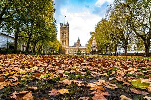 Los colores vivos de Londres
