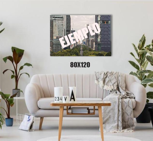 EJEMPLO-80X120