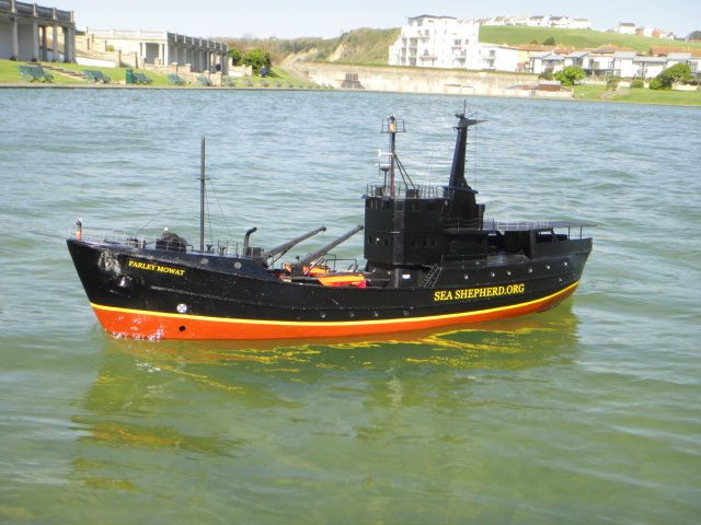 Jason B Sea Shepherd 2.jpg