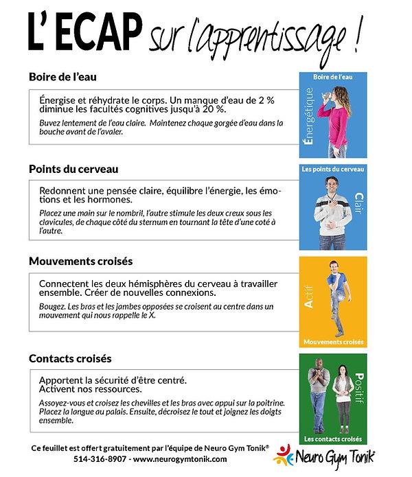 description-mouvements-ecap-brain-gym-ne