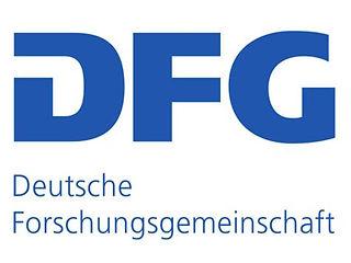 DFG logo.jpg