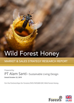 Wild Forest Honey Report Phase I-compres