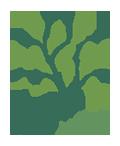Alam Santi Design Logo Portfolio-15.png