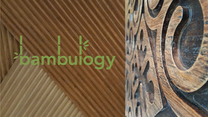 Bambulogy : Innovative Eco-Material