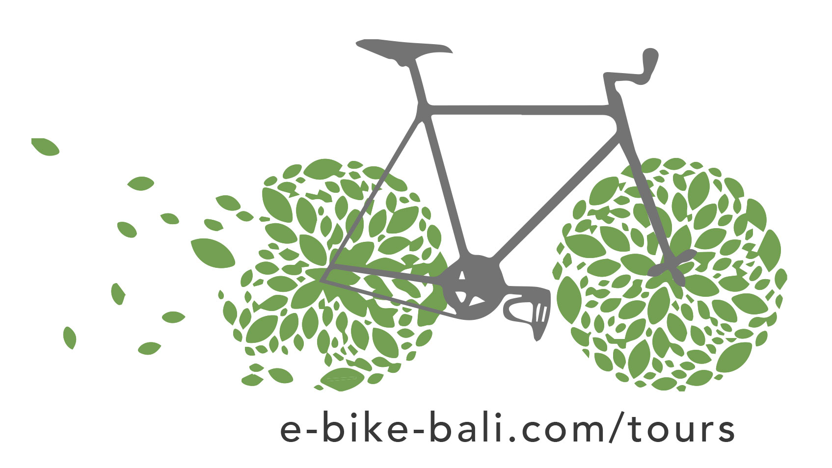 e-bike-bali-logo-copy.jpg