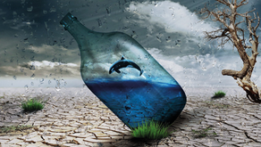 Eco-Logical Water Use : Save Money and Save Islands