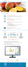 Alam Santi Design Websites Portfolio-26.