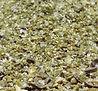 Lemon Grove Seasoning from MorningStar Kitchen