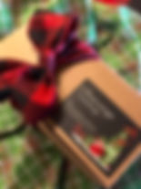 Christmas 2018 Gift on Plaid Bkgrd_edite