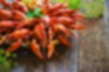 City of New Orleans Cajun Seasoning from MorningStar Kitchen